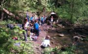 Lesní mateřská škola u Brna je to pravé pro Vaše dítě